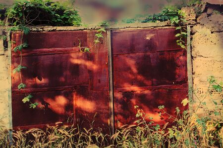 grew: The thrown, gloomy, rusted from an old age gate which grew with a weed. Tinted, horizontal photo.