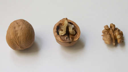 walnut lies on the table. near the shell and the core.