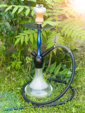 Hookah and fruits on the nature. Hookah under the green leaf. Smoke from a hookah. Fruit flavor. Coals for a hookah. Rest and relaxation.