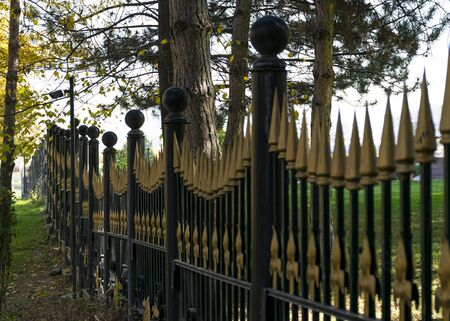 Iron fence with gilded peaks and a video camera. Security system. The border of the site.