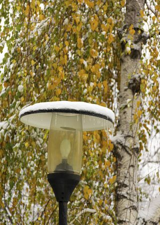 A street lamp with icicles stands on the street in cold weather. A lantern covered with snow on a background of yellow leaves in the fall. First snow. 写真素材