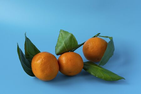 Orange juicy ripe tangerines with green leaves on a blue background. Fruits and vitamins.