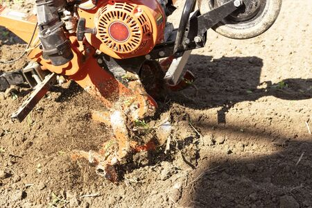 Man Farmer plows the land with a cultivator. Agricultural machinery: cultivator for tillage in the garden,motor cultivator..