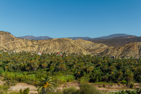 Scenic mountain valley with wild forests in Atlas Mountains, Morocco, Africa