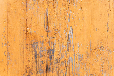 The orange or yellow wood texture with natural patterns. Imagens
