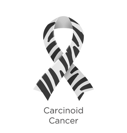 Carcinoid Cancer awareness month in November. Zebra Stripe ribbon Cancer Awareness Products. Vector illustration. Foto de archivo - 123863657