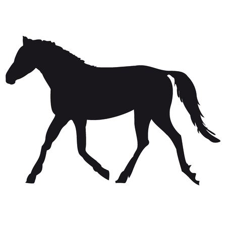 Silhouette of a horse. Vector illustration for your drain