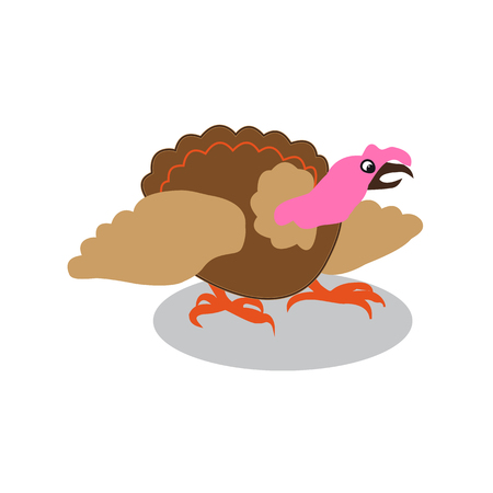 colorful turkey white background