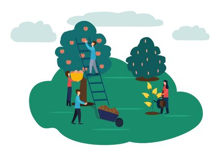 Agricultural work, watering flowers, harvesting the harvest of apples .Vector illustration in flat style