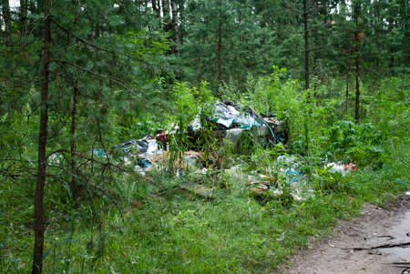 A large pile of garbage, waste in the forest. The nature of forests is polluted by humans. Ecology pollution disaster danger