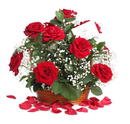 ramos de flores: Ramo de Rosa aislado en blanco  Foto de archivo