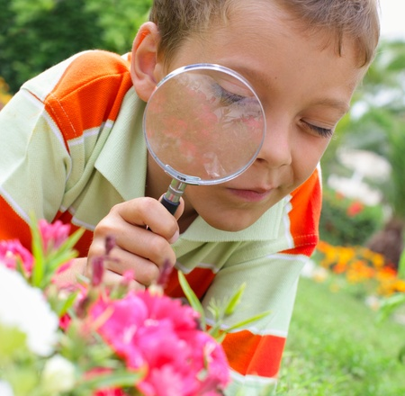 Child, examining with a magnifying glass flower photo