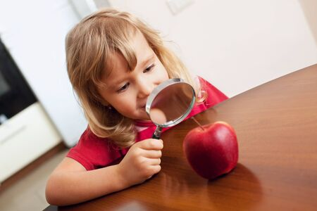 Child are considering a magnifying glass apple Stock Photo - 12472087