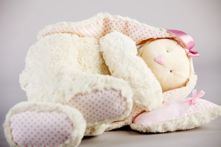 stuffed animals: Soft toy on gray background. Stock Photo