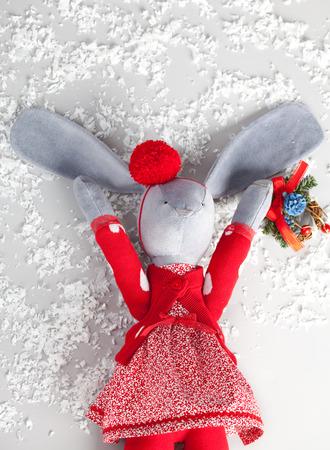 Chrictmas hare  Christmas Card photo