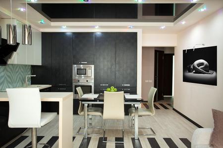 home appliances: Kitchen interior  Kitchen in modern style
