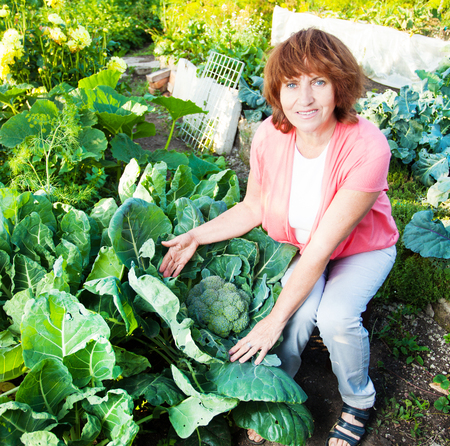 broccoli sprouts: Woman grows harvest in the garden. Senior with broccoli sprouts
