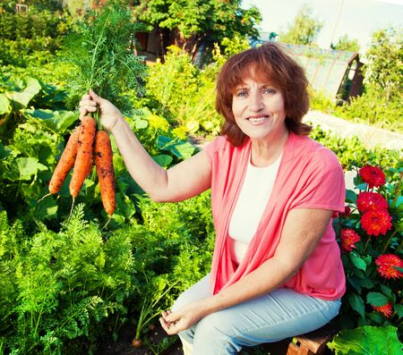 Woman grows harvest in the garden. Senior with carrot photo
