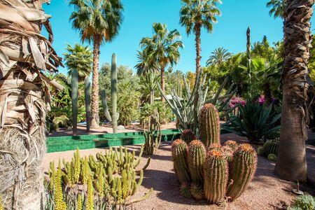 Majorelle Garden is a botanical ,tropical garden and artists landscape garden in Marrakech, Morocco. Majorelle Blue Stock Photo