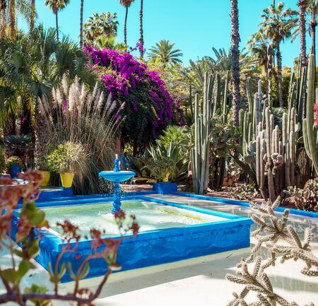 Majorelle Garden is een botanische, tropische tuin en landschapstuin voor kunstenaars in Marrakech, Marokko. Majorelle Blauw Stockfoto