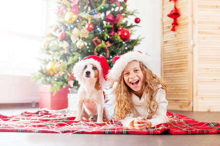 Child with dog near christmas tree. Happy Christmas and New Year 免版税图像