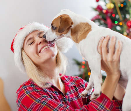 Happy woman with dog in christmas decoration. Female with pet at home 免版税图像
