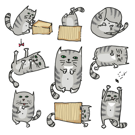 Set with cute kittens in various poses, hand drawn, painted. Vector illustration