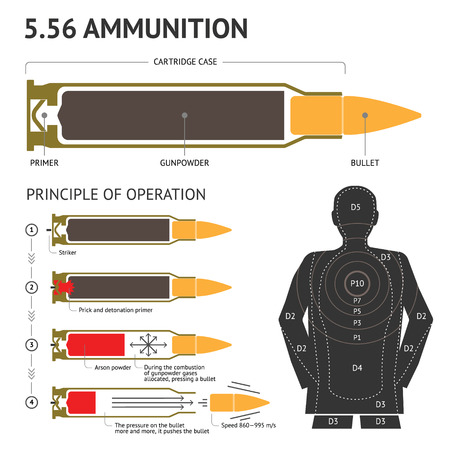 Infographics about the principle of bullet operation. Vector 스톡 콘텐츠