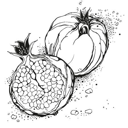 ruby: Stylized garnet or pomegranate. Black vector illustration