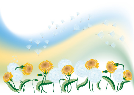 Delicate background with dandelion.Background. Banner. Wallpaper. Stock Vector - 6903761