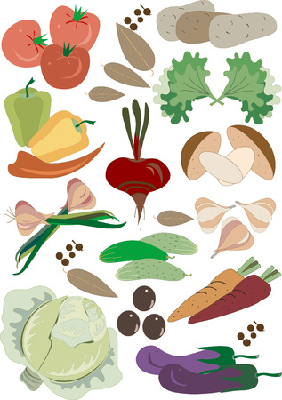 Colorful fresh group of vegetables for balanced diet.Illustration