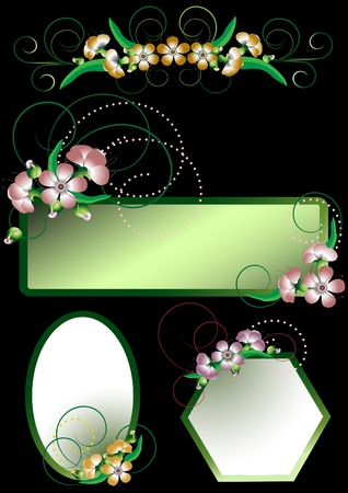 Frames with flowers with the decor of the curves  Vector