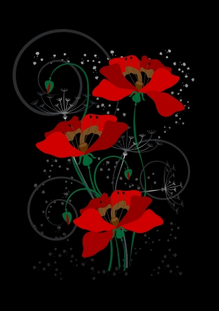 dry grass: Red poppies on a black background
