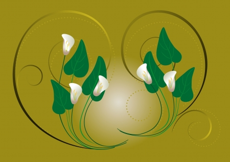 Flowers white callas on a green background Stock Vector - 18268887