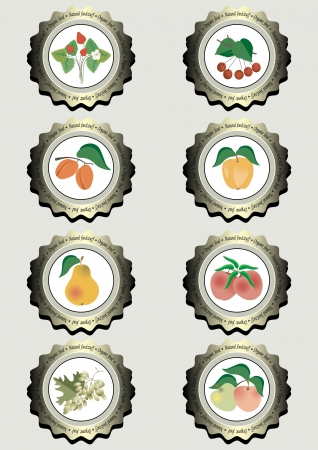 Collection of icons with fruits for food production  Vector