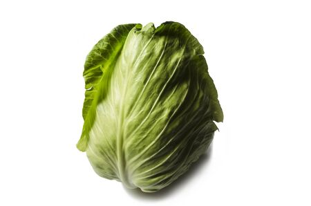 vernal: Facilities early cabbage vernal harvest on a white background