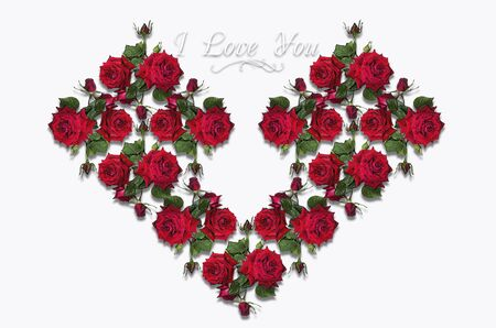rosas rojas: Design heart collected from a bouquet of red roses on a white background