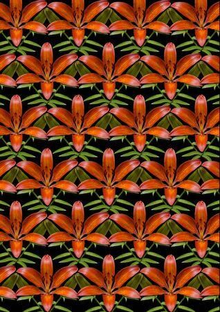 black satin: Bright seamless black background with orange satin lilies and buds