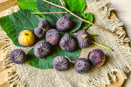 Green fig leaf with ripe dark purple berries of the Fig tree on a burlap lying on cutting board