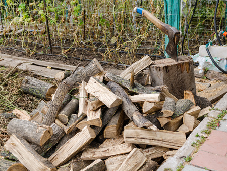chop firewood in the garden Stock Photo - 85412747
