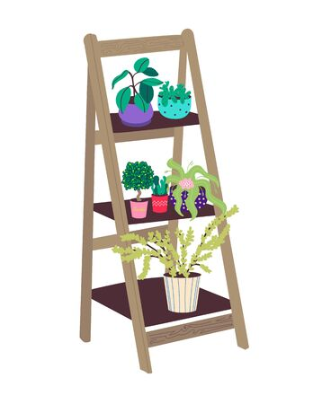 Shelf with indoor plants. Wooden stair stand for flowers. Flat vector illustration in Doodle style