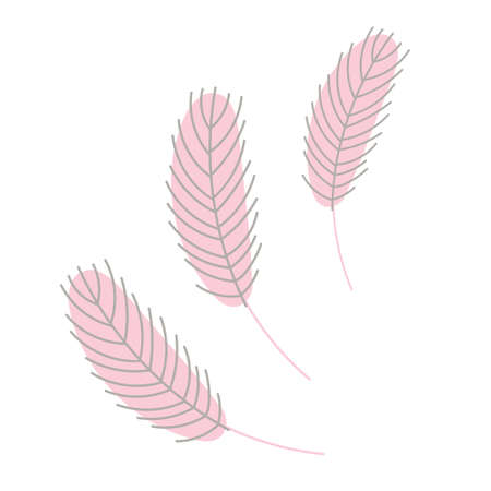 Birds feather isolated on a white background. Chicken or goose feather. Flat vector illustration