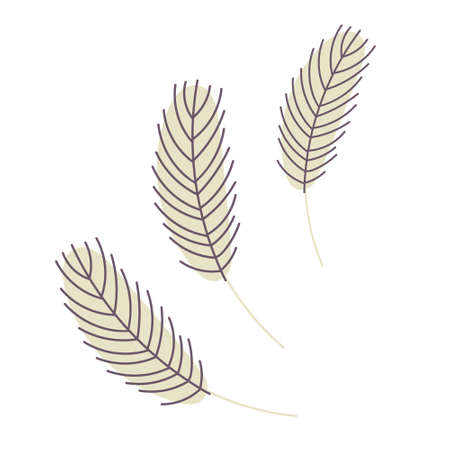 Birds feather isolated on a white background. Chicken or goose feather. Design for Easter, Christmas, postcards, stickers. Flat vector illustration