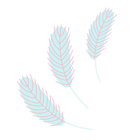 Birds feather.Chicken or goose feather