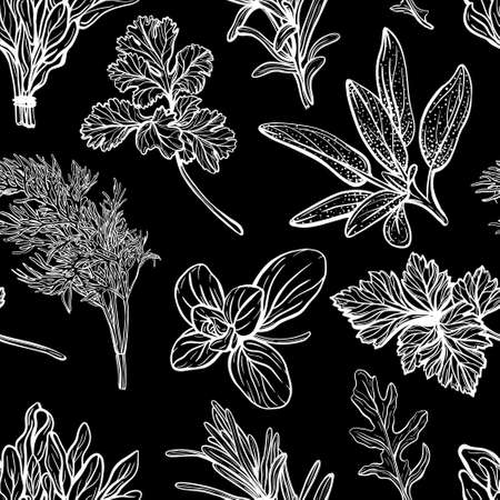 Italian herbs seamless pattern. Provencal condiments and herbs pattern. Mediterranean cuisine. Hand-drawn vector illustration