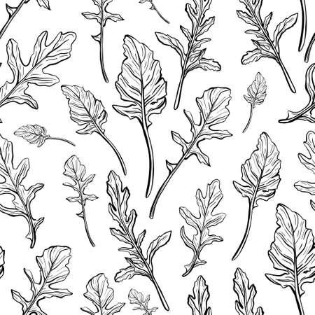 Arugula seamless pattern. Arugula leaves on a white background. Spicy and aromatic Italian seasoning. Hand-drawn vector illustration Vektorgrafik