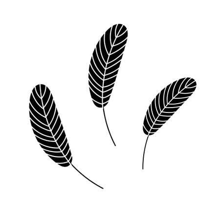 The silhouette of a birds feather. Chicken or goose feather. Flat vector illustration