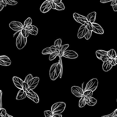 Basil Seamless Pattern. Italian herbs.A sprig of marjoram. Basil is a fragrant and fragrant seasoning. Hand-drawn illustration