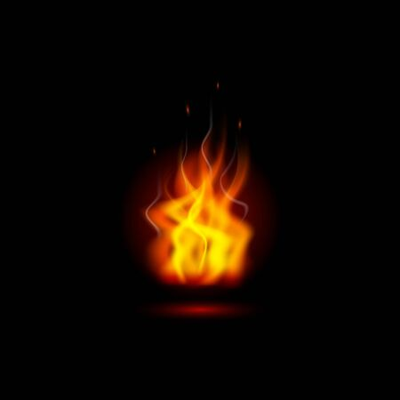 Vector illustration with realistic effect. Fiery flames. Reklamní fotografie - 132124133