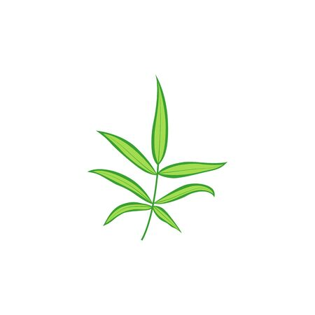 Tropical leaf. Vector isolated illustration with exotic leaf on white background. Can be used for printing, banners, postcard, websites, clothing. 写真素材 - 132429363